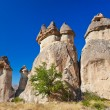 Stock Photo: Rock formations in CappadociTurkey