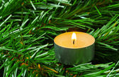 Candle and christmas tree — Stock Photo