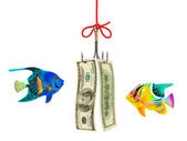 Fishing hook and money — Stock Photo