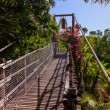 Footpath in jungle - Tenerife Canary islands — Stock Photo