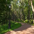 Tsaritsino park - Russia Moscow - Stock Photo