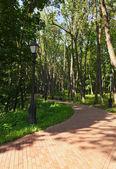 Tsaritsino park - Russia Moscow — Stock Photo