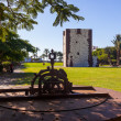 Tower Torre del conde in SSebasti- LGomerIsland - Cana — Stock Photo #14769155