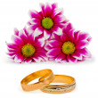 Stock Photo: Flowers and wedding rings
