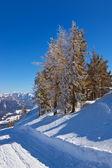 Dağlar resort st. gilgen avusturya kayak — Stok fotoğraf