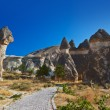 Fairy chimneys (rock formations) at Cappadocia Turkey - Stock Photo