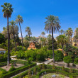Real Alcazar Gardens in Seville Spain — Stock Photo #15863489