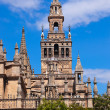 Cathedral La Giralda at Sevilla Spain — Stock Photo #19912497