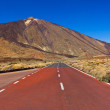 road to volcano teide at tenerife island - canary — Stock Photo