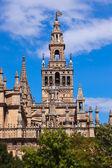 在西班牙塞维利亚大教堂 la giralda — 图库照片