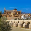 Bridge at Cordoba Spain — Stock Photo