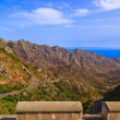 Mountains in Tenerife island - Canary — Stock Photo #21549363