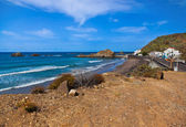 Coast in Tenerife island - Canary Spain — Stok fotoğraf