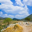 Royalty-Free Stock Photo: Pathway to mountains in Mycenae, Greece