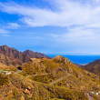 Mountains in Tenerife island - Canary — Stock Photo #21785071