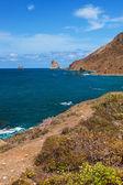 Costa em tenerife espanha ilha - canárias — Fotografia Stock