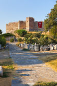 Roman fortress at Selcuk Ephesus Turkey — Stock Photo