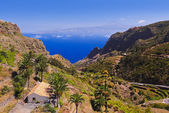 Road in La Gomera island - Canary — Stock Photo
