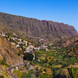 Road in La Gomera island - Canary — 图库照片