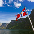 Stock Photo: Norway flag and Sognefjord