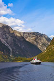 Fjord Sognefjord - Norway — Stock Photo