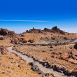 Volcano Teide in Tenerife island - Canary Spain — Stock Photo #32062405
