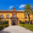 Real Alcazar Gardens in Seville Spain — Stock Photo #32568271