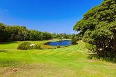 Golf field - ön praslin seychelles — Stockfoto