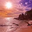 Seychelles tropical beach at sunset — Stock Photo