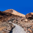 Volcano Teide in Tenerife island - Canary Spain — Stock Photo