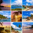 Collage of summer beach images — Stock Photo #51152963