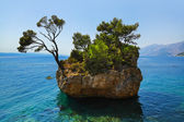 Island and trees in Brela, Croatia — Stock Photo