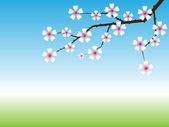Jarní pozadí s kvetoucí větve stromu — Stock vektor