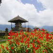 Stock Photo: Ulun Danau Temple garden