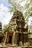 Ancient Ta Prohm or Rajavihara Temple at Angkor, Siem Reap, Cam — Stock Photo