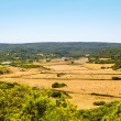 menorca island landcape with farmland and green hills — Stock Photo