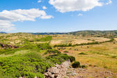Menorca island field landscape with old traditional masonry fenc — Stock Photo