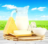 Dairy — Stock Photo