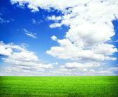Güzel sabah yeşil alan ile mavi cennet — Stok fotoğraf