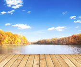 Beautiful autumn forest with water and wood planks — Stock Photo
