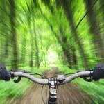 Mountain biking down hill descending fast — Stock Photo #36094723