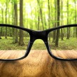 Clear forest in glasses on the background of blurred forest — Stock Photo