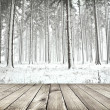 Beautiful winter forest with wood planks floor — Stock Photo