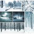 Winter collage with forest, county, park and many trees with snow  — Stock Photo