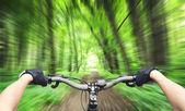 Mountain biking down hill descending fast — Stock Photo