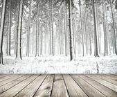 Güzel kış orman ahşap plakalar kat ile — Stok fotoğraf