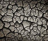Cracked ground — Stock Photo