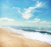 Summer sandy beach — Stockfoto