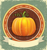 Pumpkin label with scroll for text.Vector vintage icon on old p — Stock Vector