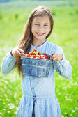 Child eating strawberries in a field — Stock Photo